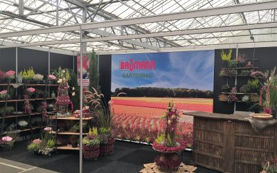 Messe 2018 Plantarium und Trade Fair in Holland